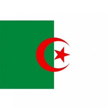 101 INC Drapeau Algerie 150x100 (101 Inc) AC-WP47138975A Drapeau