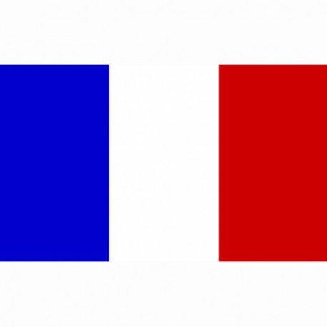 101 INC Drapeau France 150x100 cm HA-WP447200114 Equipements