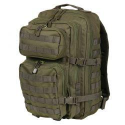 35L Tasche: Berg / Berg OD (101 Inc)