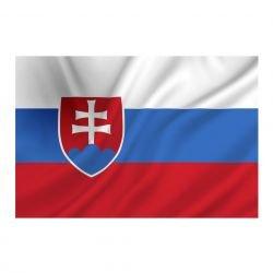 101 INC Drapeau Slovaquie 150x100 cm AC-WP447200071 Drapeau