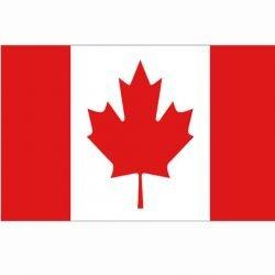 101 INC Drapeau Canada 150x100 cm AC-WP447200103 Drapeau