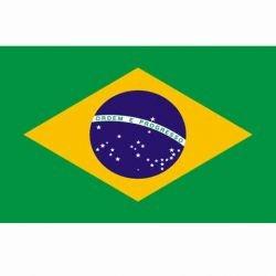 101 INC Drapeau Brésil 150x100 cm AC-WP447200122 Drapeau
