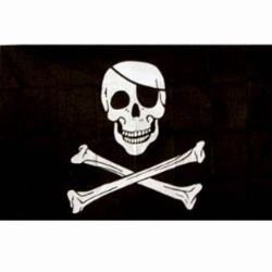 101 INC Drapeau Pirate Jolly Rogers 150x100 cm HA-WP447200166 Drapeau