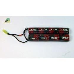 ASG Batterie Nimh 9,6v Double 2200 mAh (EinrichPower) AC-A2822513N Batteries