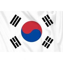 Drapeau Corée du Sud 150x100 cm (101 Inc)