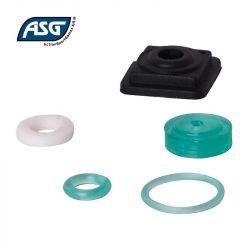Kit réparation ASG Dan Wesson CZ